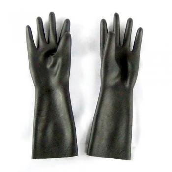 Surgeon's Gloves